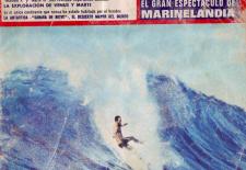AQUELLOS MARAVILLOSOS AÑOS: El surf y sus complicadas leyes hidrodinámicas